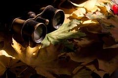 Old binoculars. Royalty Free Stock Photo