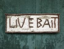 Old Birch Wood Sign for Live Bait Stock Photo