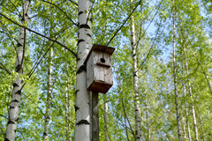 Old bird house. Stock Images