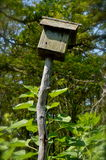 Old bird house in Cape Cod. Hand made bird house on the shore of Cape Cod in summer time Stock Photography