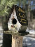 Old bird house Royalty Free Stock Image