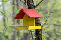 Old bird wooden house Royalty Free Stock Photo
