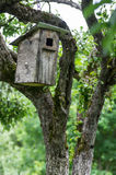 Old birdhouse Royalty Free Stock Photography