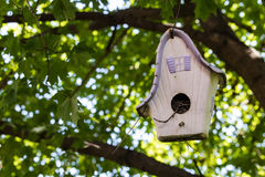 Old birdhouse hanging in a tree Royalty Free Stock Image