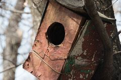 Old birdhouse in the park stock photography