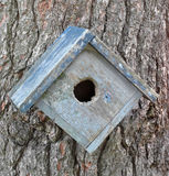 Old birdhouse on a tree Stock Photos