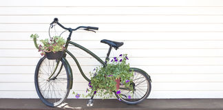 Old black bicycle. With flowers used for background Stock Photography