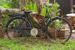 Old black bike in the garden. Coffee shop or home decoration Royalty Free Stock Photo