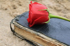 Old Black Book on the Beach Sand. Old Black Book on Beach Sand with a Red Rose on it Royalty Free Stock Images