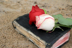 Old Black Book on the Beach Sand. Old Black Book on Beach Sand with Roses on it Royalty Free Stock Image