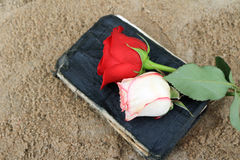 Old Black Book on the Beach Sand. Old Black Book on Beach Sand with Roses on it Stock Images