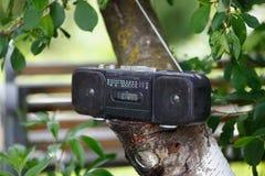 Old black cassette tape recorder. Retro old black cassette tape recorder on the tree Royalty Free Stock Image
