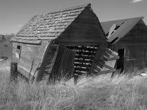 Old black and white barn. Falling old barn in kamas utah Stock Photo