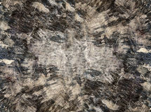 Old black wood texture (for background) Stock Photography