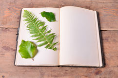 Old blank book Royalty Free Stock Image