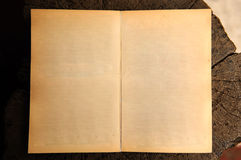 Old blank book open. On wood background Royalty Free Stock Photos