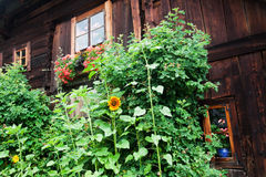 Old block house in Austria with cottage garden Stock Image