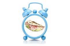 Old blue alarm clock Stock Photography
