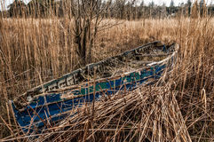 Old blue boat stuck in a canebrake. An abondoned old blue boat stuck in a canebrake Royalty Free Stock Photos