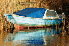Old blue boat. An old blue wooden boat moored up in the reeds. Stern and side to the camera. A blue tarp cover the entrance to the cabin. Reflections in water Royalty Free Stock Photos