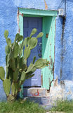 Old blue door. Old blue wood door framed with blue stucco and desert vegetation stock photo