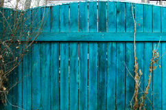 Old blue wood fence. Texture background Royalty Free Stock Image