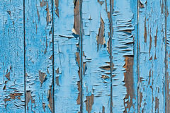 Old blue wood plank background. Stock Image