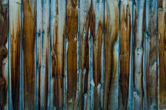 Old blue wood texture after rain Royalty Free Stock Photography