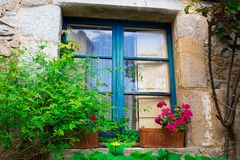 Old blue wood window with flowers on the facade of Royalty Free Stock Photo