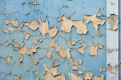 Old blue and yellow texture on the wall. Blue texture on the wall with yellow under texture Royalty Free Stock Photos