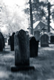 Old Blurry Tombstones. Old blurred tombstones are seen in a cemetery Royalty Free Stock Photo