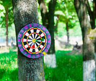 Old board game of darts. Stock Image