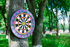 Old board game of darts. Royalty Free Stock Photo