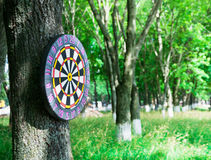 Old board game of darts. Royalty Free Stock Image