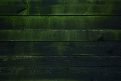 The old board with moss. The wood texture. Stock Photography