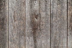 Old boards Stock Images