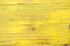 The old boards covered with a yellow varnish Royalty Free Stock Image