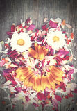 Old boards with flowers face concept Royalty Free Stock Images
