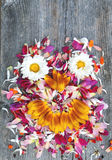 Old boards with flowers face concept Royalty Free Stock Photo