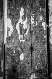 Old boards in an old house with the remains of old newspapers. S Stock Image