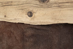 Old boards and reindeer fur Royalty Free Stock Image