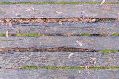 Old boards two. The photo shows a beautiful texture of old boards between which the moss grew. On the boards lie fallen pine needles Stock Photography