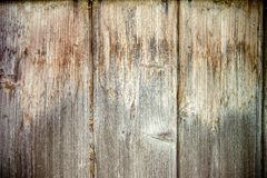 Old boards vertically standing pine Stock Images