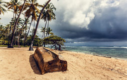 Old boat on beach. Dominican Republic Stock Photo