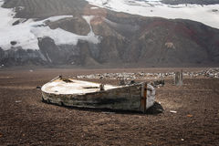 Old boat on Deception island Stock Photography