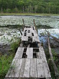Old boat dock on a dying pond. Royalty Free Stock Photography