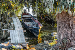 Old boat on the dock among the trees. Rustic landscape with wood Royalty Free Stock Photos