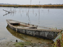 Old boat filled with water Royalty Free Stock Photo