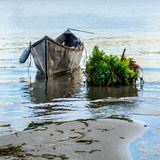 Old boat near the shore with a green bush. Horizontal view of an. Old boat, floating near the shoreline Royalty Free Stock Photography