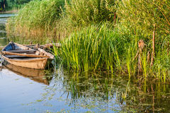 Old boat near the shore of the river. Old fishing boat near a marshy riverbank Stock Photography